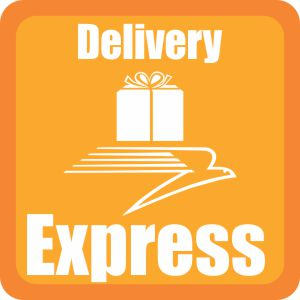 delivery express percetakan bogor